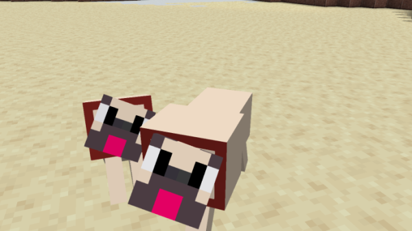 Pugs In Minecraft 1.15 - replace wolves with pugs - 2