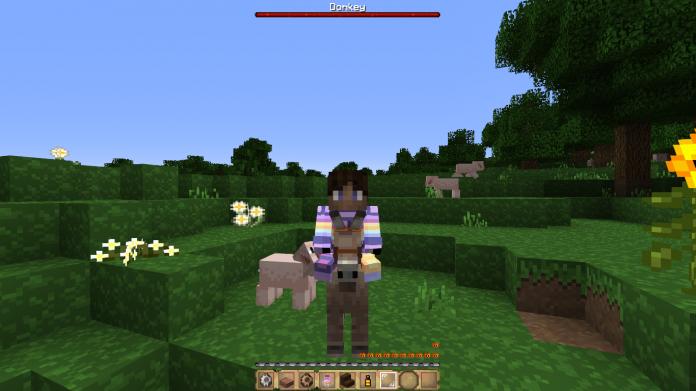Minecraft Donkey - 1