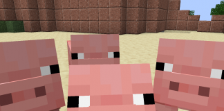 Minecraft Pigs - 1