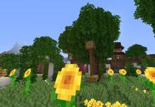 Nates Tweaks 1.16 - Minecraft Texture Pack - 1